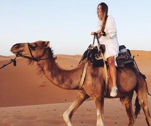 camel, desert, and girl image
