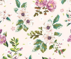 background, romantic, and botanical image