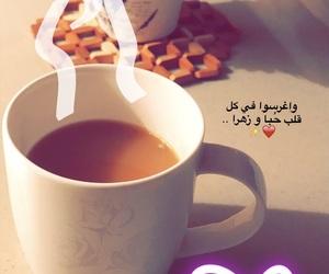 تبوك, جدة, and حُبْ image