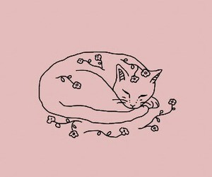 cat, pink, and art image