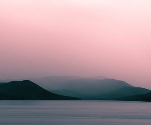 pink and nature image