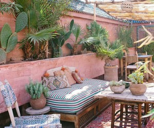 cactus, inspire, and morocco image