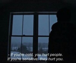 quotes, hurt, and cold image
