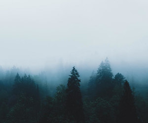 blue, explore, and fog image