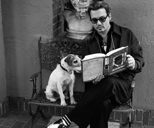 johnny depp, dog, and book image