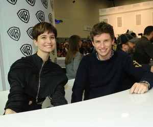eddie redmayne, fantastic beasts, and katherine waterston image