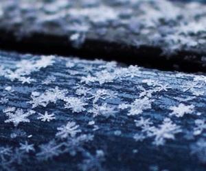 winter, snow, and snowflake image