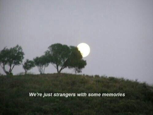 memories, quotes, and strangers image