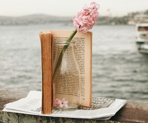 book, flowers, and istanbul image