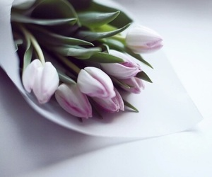flowers, tulips, and pastel image