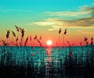 sun, sunset, and cool image