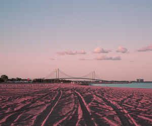 beach, pink, and photography image