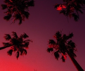 wallpaper, red, and summer image