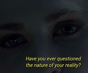quotes, reality, and westworld image