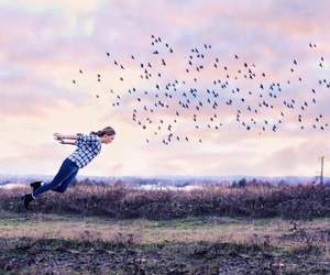 amazing, art, and fly image