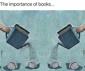 book, quote, and brain image