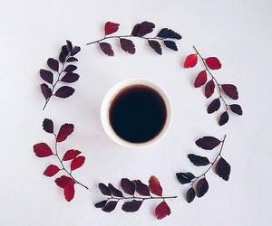 coffee, leaves, and tea image