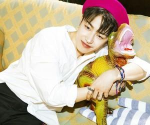 block b, u-kwon, and kpop image