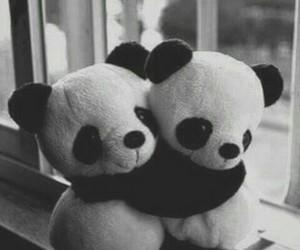 panda, hug, and black and white image