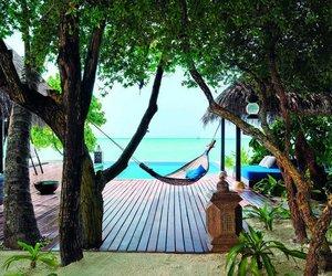 tree, hammock, and ocean image
