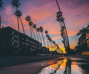 sky, beautiful, and palms image