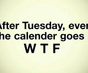 funny, calendar, and wtf image