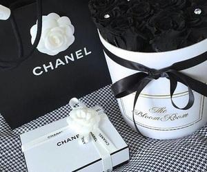 chanel and baeluxury image