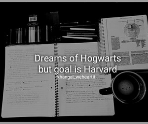 school, college, and goals image