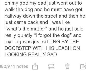 dad, dog, and funny image
