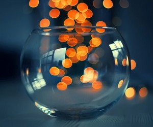 glass, bokeh, and light image