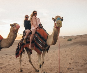 camel, Dubai, and travler image