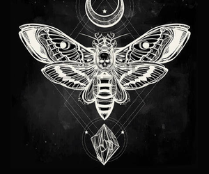 tattoo, moth, and moon image