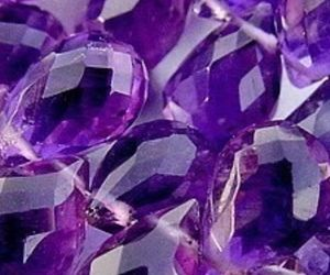 etsy, grape, and natural image