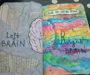 brain and wreck this journal image
