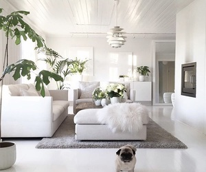 chic, chimney, and couch image
