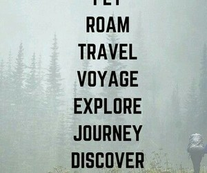 travel, adventure, and fly image