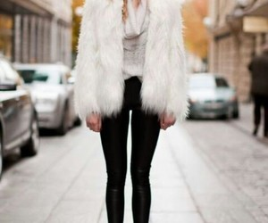 accessories, sunglasses, and fur coat image