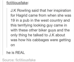 funny, harry potter, and jk rowling image