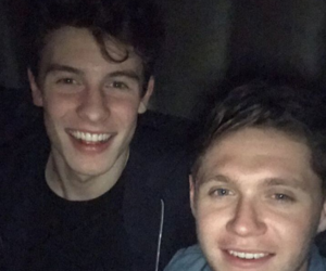 mendes, shawn, and nialler image