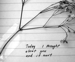 it hurts, journal, and plant image