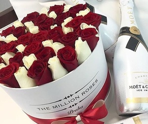 roses, love, and red image
