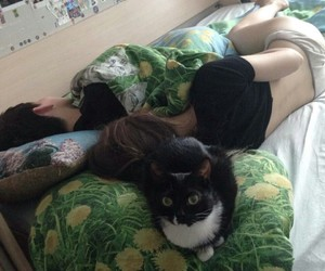 cat, couple, and grunge image