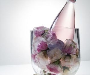 ice, party, and rose image