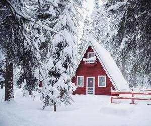 cabin, nature, and cold image