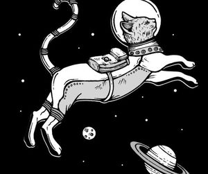 cat, space, and planets image