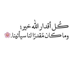 arabic, dz, and السلام image