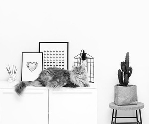 tumblr, decoration, and grey image