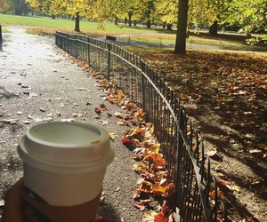 fall, Hyde Park, and leaf image