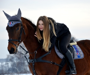 equestrian, horses, and long hair image