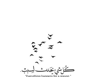 quotes, reason, and arabic image